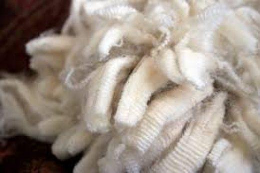 Валяние из шерсти мериноса — старинное искусство